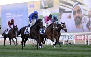 الصورة: الصورة: دبي عاصمة سباقات الخيول