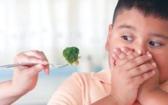 الصورة: الصورة: سمنة الأطفال.. تكاتف المجتمع ضمانة للتصدي لأمراض المستقبل