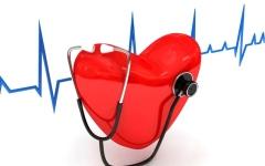 الصورة: الصورة: بطء القلب.. الأنماط الصحية تحدّ من خطورة مضاعفاته