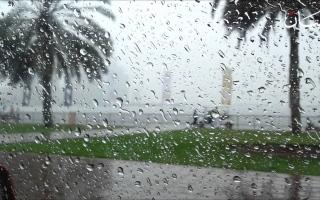 الصورة: ماذا بعد سقوط المطر؟ أسرار اكتشفوها