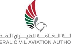 الصورة: الصورة: الهيئة العامة للطيران المدني تنفي شائعة سقوط طائرة في دبي