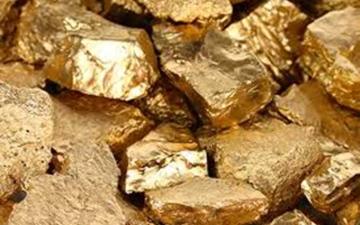 الصورة: الصورة: يعثر على كنز من الذهب في الصحراء