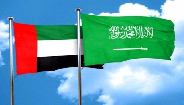 الإمارات والسعودية تعززان تعاونهما في مجال تطوير العمل الحكومي - البيان thumbnail