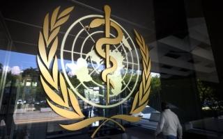 الصورة: الصورة: انتخاب الإمارات نائبا لرئيس جمعية الصحة العالمية