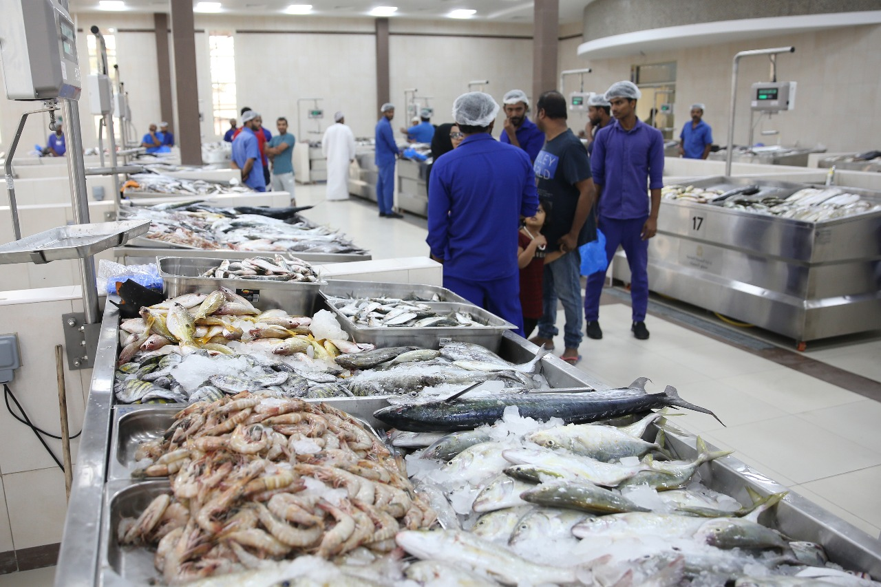 انخفاض أسعار الأسماك 40% في أسواق رأس الخيمة
