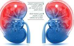 الصورة: الصورة: مرضى الكلى.. المعايير الطبية في تناول السوائل والعلاج تقي من المضاعفات أثناء الصيام