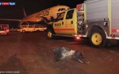 الصورة: الصورة: شهيد وإصابة 7 مدنيين في هجوم حوثي إرهابي على مطار أبها