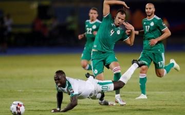 """الصورة: الصورة: """"الكاف"""" يعلن تغيير حكم مباراة الجزائر والسنغال"""