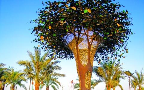 الصورة: الصورة: الحديقة القرآنية