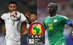 الصورة: الصورة: قراء البيان يتوقعون تتويج الجزائر بكأس الأمم الإفريقية