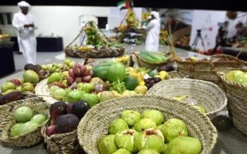 الصورة: الصورة: 100 متسابق يشاركون في «المزرعة النموذجية» بمهرجان ليوا للرطب