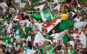 الصورة: الصورة: الجزائر تعيد آخر مشّجعيها من مصر بـ 39 طائرة