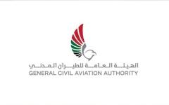 """الصورة: الصورة: """"الطيران المدني"""": تنسيق إماراتي سعودي لخدمة ضيوف الرحمن"""