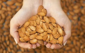 الصورة: الصورة: ماذا يحدث لجسمك عند تناول 10 غرامات من اللوز يومياً؟