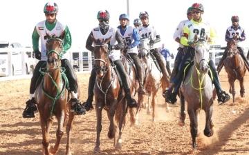 الصورة: الصورة: 17 سباقاً للقدرة في ميدان الوثبة بالموسم الجديد