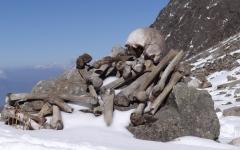 """الصورة: الصورة: قصة """"بحيرة الرفات"""" .. ألغاز عجيبة حول آلاف العظام البشرية"""