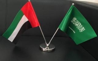سبع لجان لتحقيق التكامل الإماراتي السعودي في المجالات الحيوية