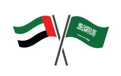 الصورة: الصورة: سبع لجان لتحقيق التكامل الإماراتي السعودي في المجالات الحيوية