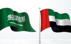 الصورة: الصورة: الإمارات والسعودية: تحالفنا حصن لأمن المنطقة
