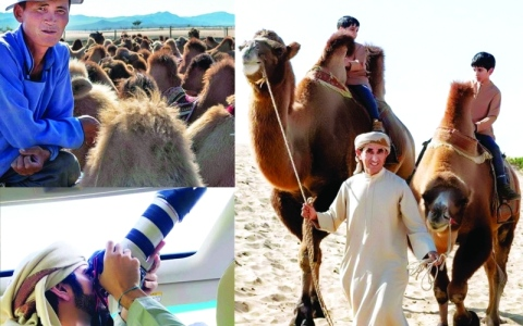 الصورة: الصورة: لقطات من منغوليا