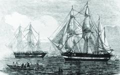 الصورة: الصورة: لقطات غريبة داخل حطام سفينة غارقة منذ 170 عاماً