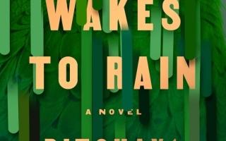 الصورة: الصورة: «بانكوك تستيقظ على هطول المطر»