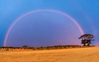 الصورة: الصورة: قوس قزح وردي في إسكتلندا