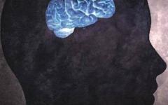 الصورة: الصورة: احذر.. هذه المهن ستقلص حجم دماغك!
