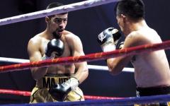 الصورة: الصورة: نجاح باهر للنسخة الثانية من بطولة ملاكمة المحترفين في دبي