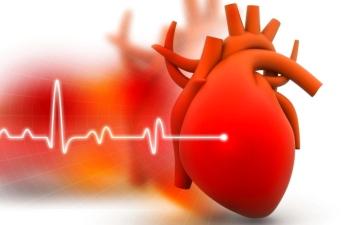 الصورة: الصورة: حقنة هلام تصلح أضرار قصور القلب