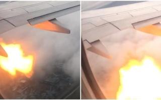 الصورة: الصورة: بالفيديو.. لحظات رعب على متن طائرة ركاب كندية