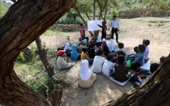 الصورة: الصورة: الأشجار بديلاً للمدارس في اليمن
