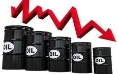 الصورة: الصورة: تراجع كبير لأسعار النفط في تعاملات اليوم