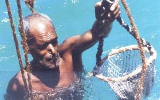 الصورة: الصورة: التراث البحري في الإمارات.. بين الكتاب المسطور والحدث المنظور «3-2»