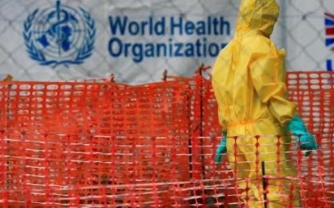 الصورة: الصورة: وباء سيقتل 80 مليون شخص