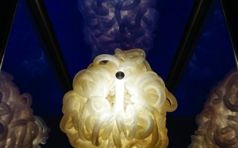 الصورة: الصورة: مصابيح إنارة من أمعاء الأبقار