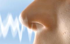 الصورة: الصورة: ابتكار جهاز لتشخيص الأمراض من رائحة الجسم