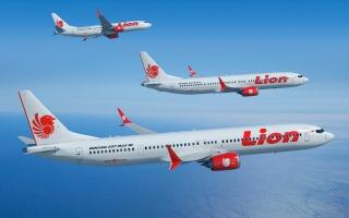الصورة: الصورة: إندونيسيا تكشف أسباب تحطّم طائرة بوينغ 737 ماكس أكتوبر الماضي