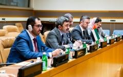 الصورة: الصورة: جهود إماراتية فاعلة لحل الأزمات العربية