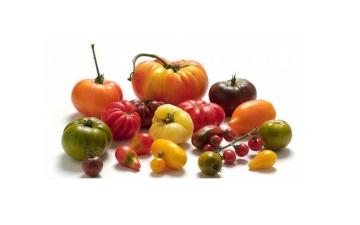الصورة: الصورة: أسرار عجيبة عن الطماطم وفوائدها