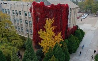 """الصورة: الصورة: مبنى """"الشلال الأحمر"""""""