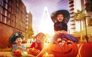 الصورة: الصورة: مفاجآت وغرائب تحتضنها «بلوواترز» في «الهالووين»