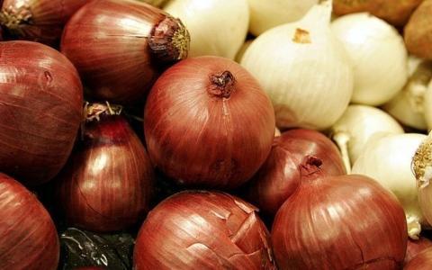 الصورة: الصورة: أيهما أفضل لصحة الإنسان..البصل الأحمر أم الأبيض؟