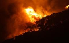 الصورة: الصورة: عشرات الحرائق تدمر مساحات شاسعة من الغابات في استراليا