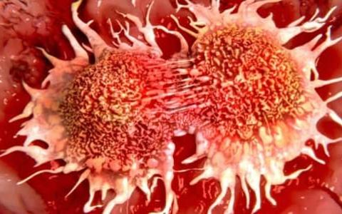 الصورة: الصورة: تطوير فيروس قادر على قتل كل أنواع السرطان