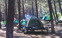 الصورة: الصورة: رحلات التخييم.. الإهمال يضاعف مخاطر الحروق خلال موسم الشتاء