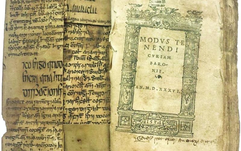 الصورة: الصورة: مخطوطة نادرة لـ «القانون في الطب» لابن سينا بالأيرلندية