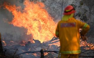 """الصورة: الصورة: إغلاق 600 مدرسة في أستراليا بسبب حرائق غابات """"كارثية"""""""