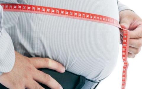 الصورة: الصورة: أفضل أربع قواعد لخسارة الوزن