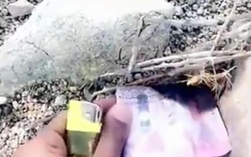 الصورة: الصورة: ضبط شخص يحرق عملة نقدية مزيّفة في السعودية